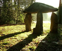 The Cromlech at Delamore Estate